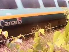 another train flash.avi Thumb